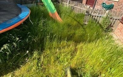 Overgrown Garden in Manchester