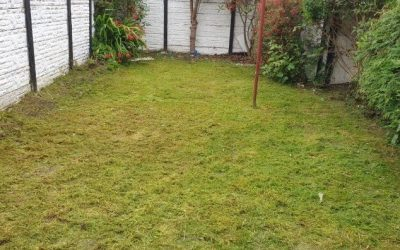 Waste removal and garden tidy up in Warrington