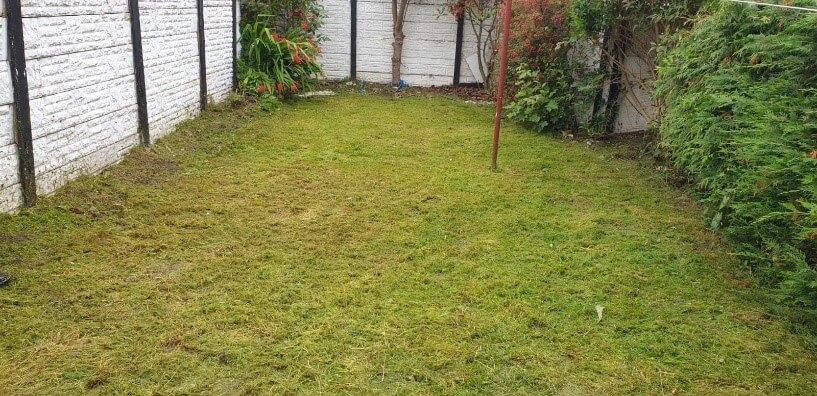 garden clearance warrington